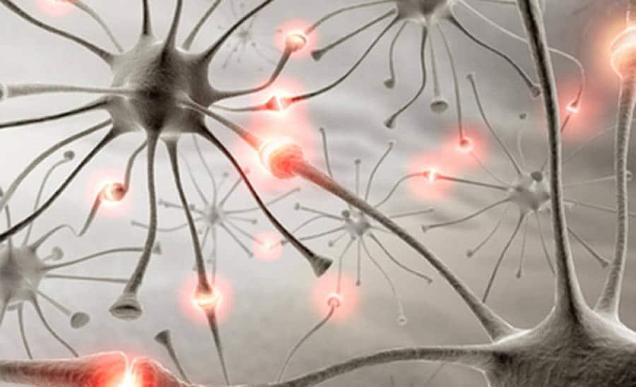 friedreich's ataxia, Peripheral Neuropathies: Friedreich's Ataxia