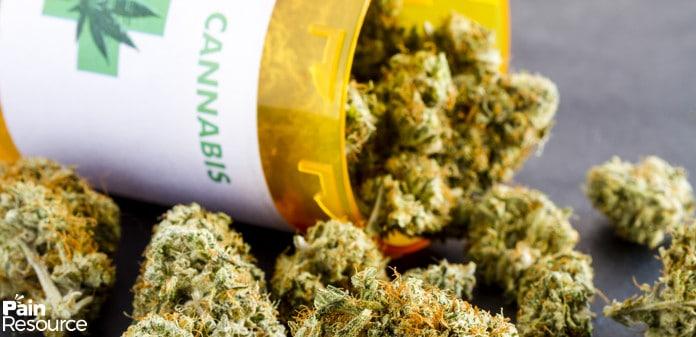 medical marijuana pain, Medical Marijuana for Pain