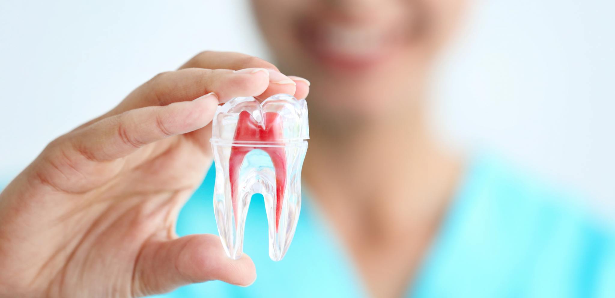 Ask the Expert: No Need to Fear Root Canal Therapy
