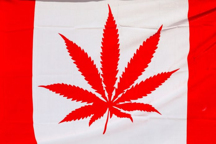 Legalized Cannabis, The Main Reason Why Canada Legalized Cannabis