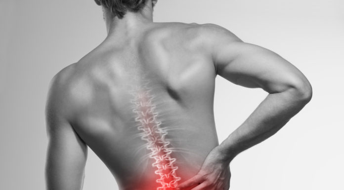 Management of Chronic Low Back Pain lower back pain