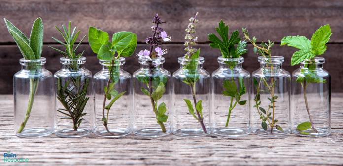 Love Your Skin: The Best Essential Oils for Eczema