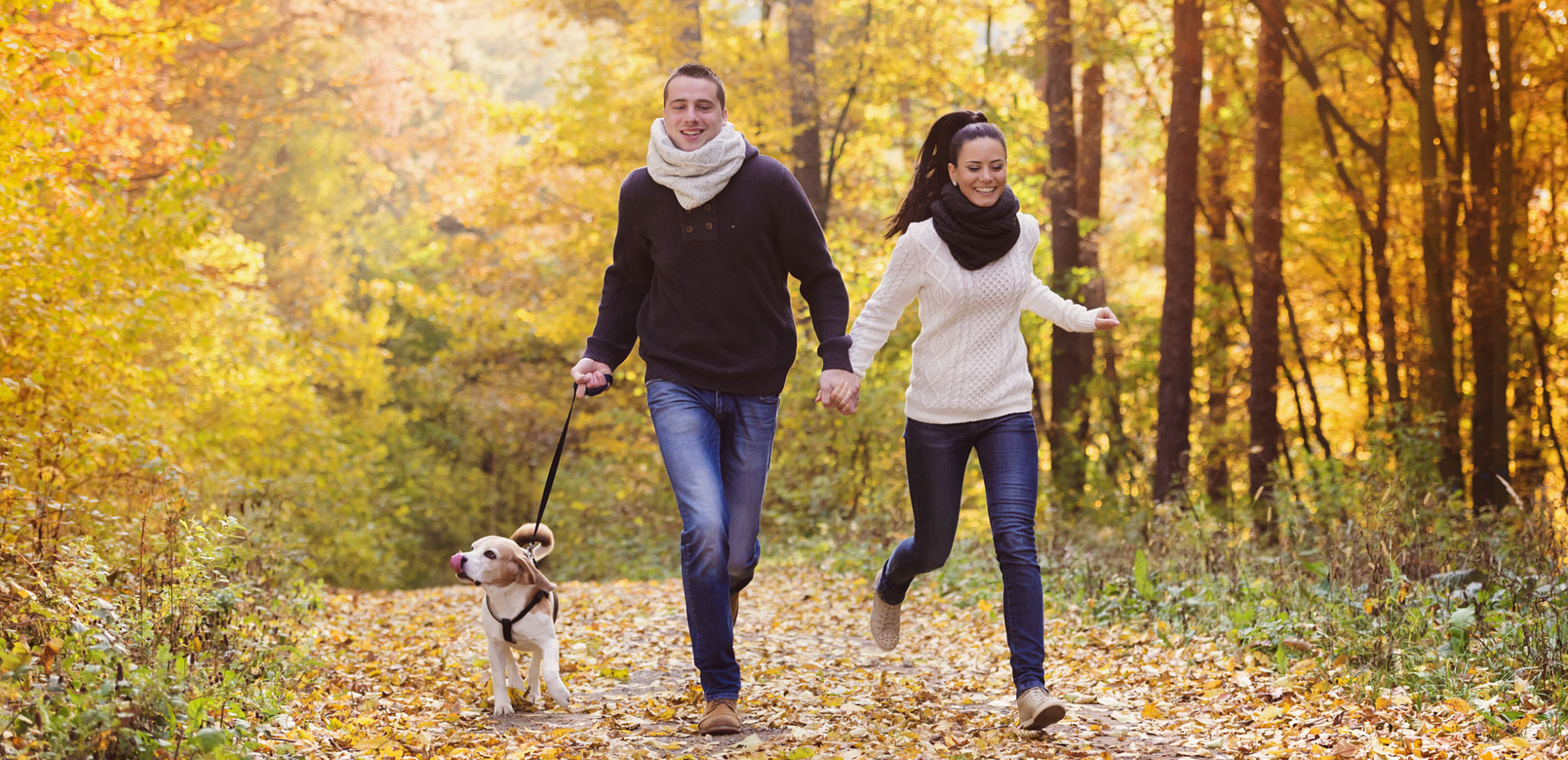 Fall Activities that Are Easy on Your Joints, Try These Joint-Friendly Outdoor Fall Activities