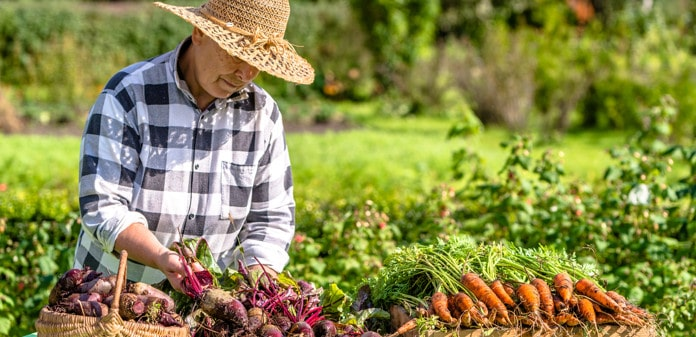 organic foods better for pain, Are Organic Foods Better for Pain?