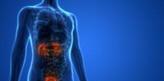 Bladder Health Awareness Month