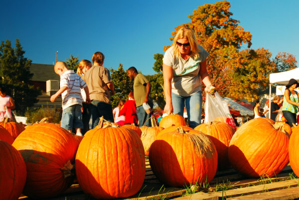 Exploring a pumpkin patch enjoy the holidays with chronic pain