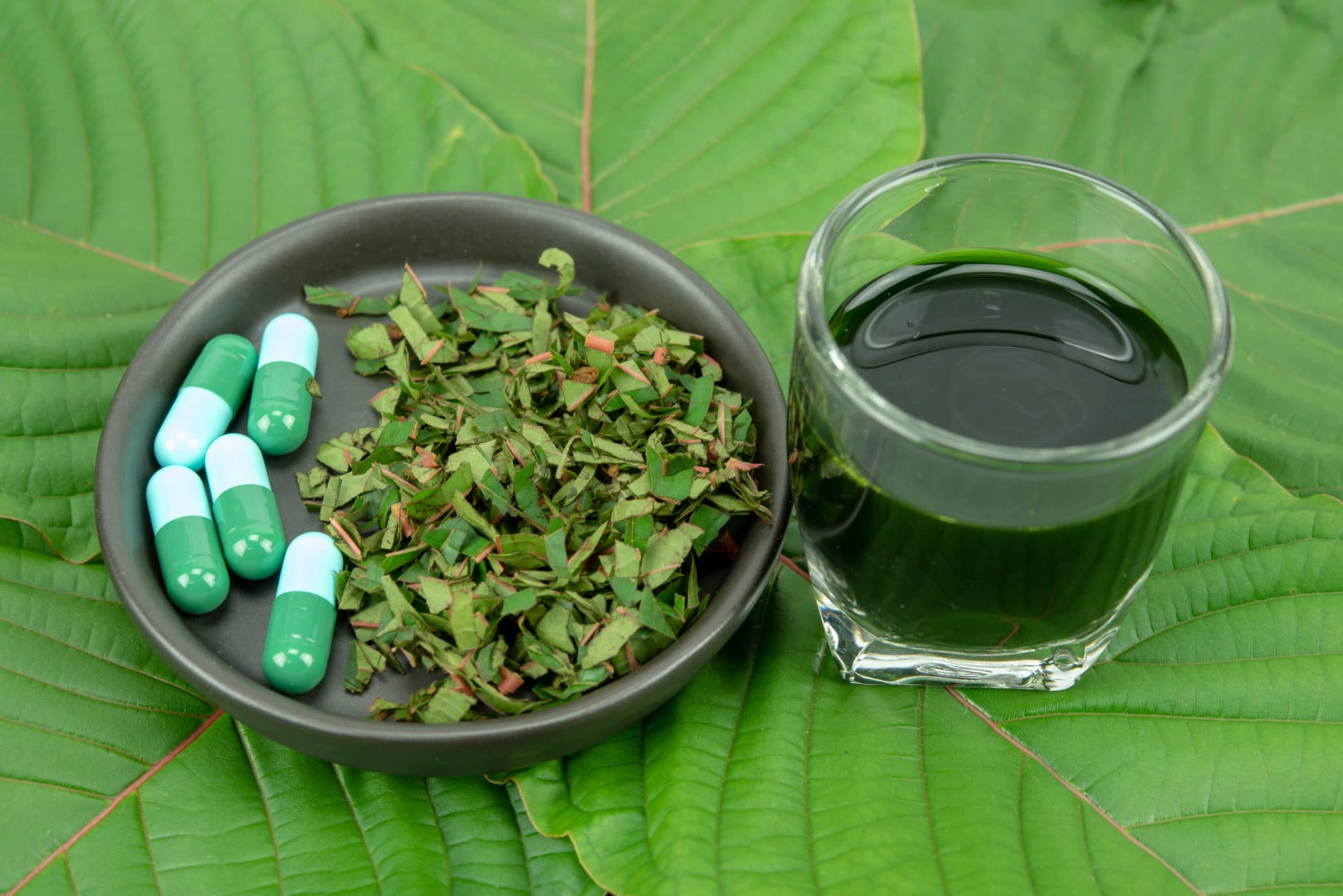 CDC Report: Clear Link Between Kratom and Overdose Deaths