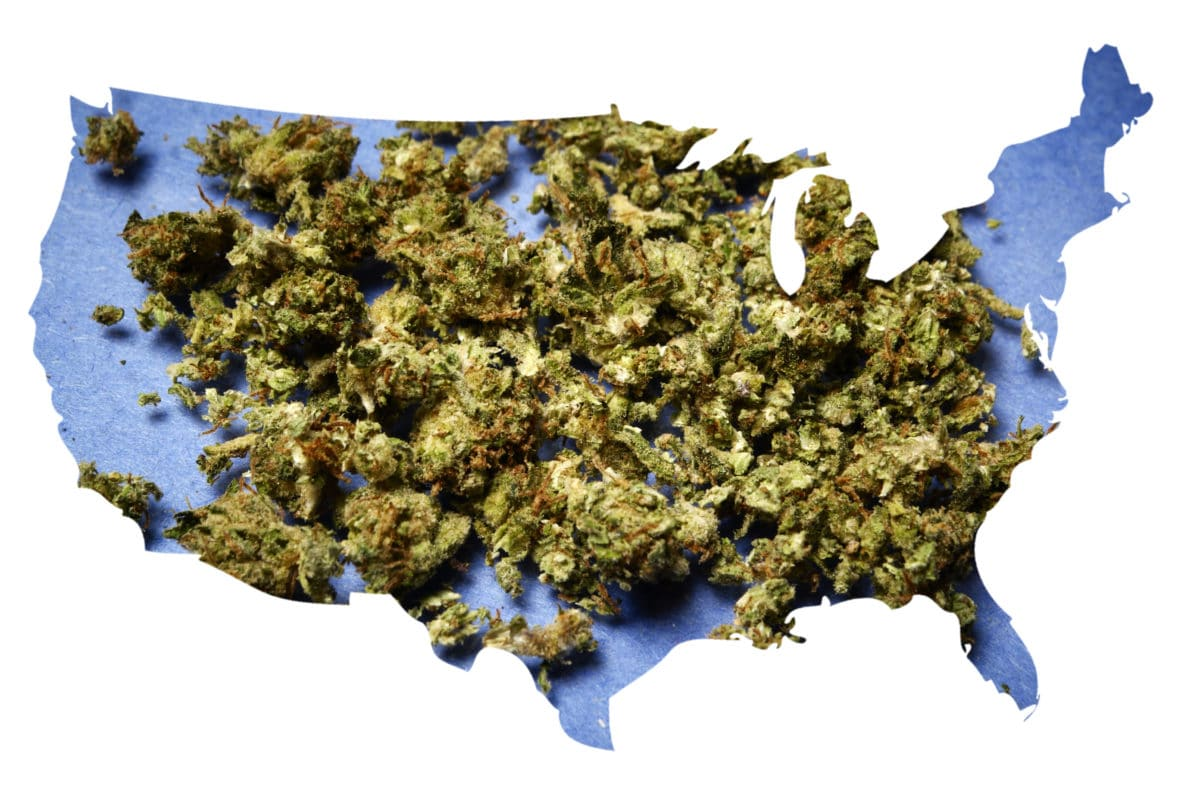 marijuana legalization and pain management marijuana buds on a map of the United States