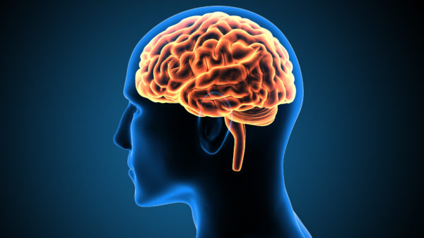 brain zap