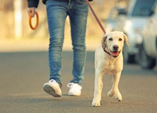 walking to reduce pain