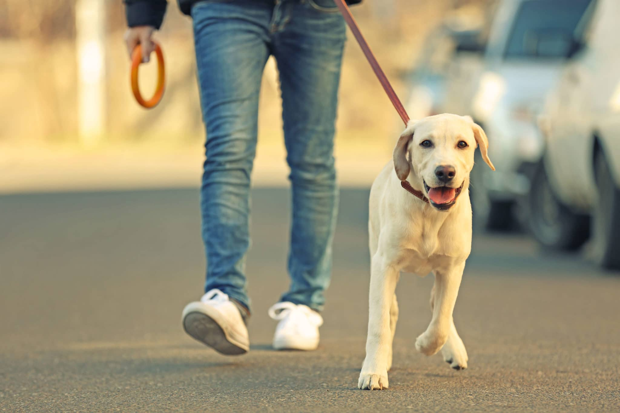 walking to reduce pain, Walking to Reduce Pain